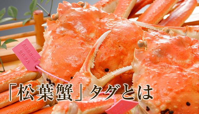 日本海の松葉蟹のタグをご紹介|...
